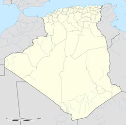 nazwy domen w algieria