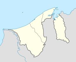 nazwy domen w brunei darussalam