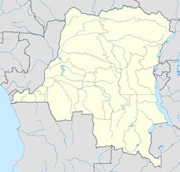 nazwy domen w demokratyczna republika konga