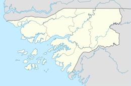 nazwy domen w gwinea bissau
