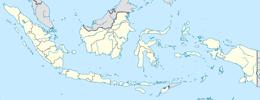 nazwy domen w indonezja
