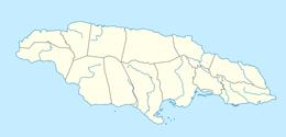 nazwy domen w jamajka
