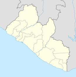 nazwy domen w liberia
