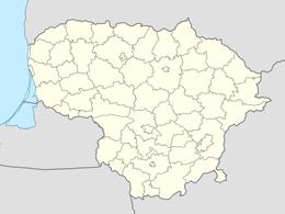 nazwy domen w litwa
