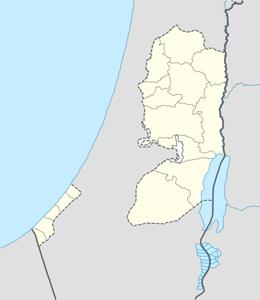 nazwy domen w palestyna