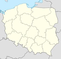 nazwy domen w polska