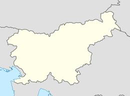 nazwy domen w słowenia