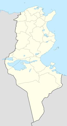 nazwy domen w tunezja